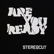 StereoCut - Are you ready